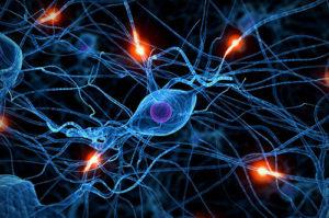 mozog-a-zavislost-na-porne
